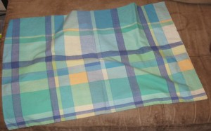 Plaid pillow case